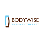 Bodywise Physical Therapy photo